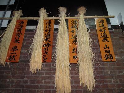 新米 酒造好適米「山田錦」